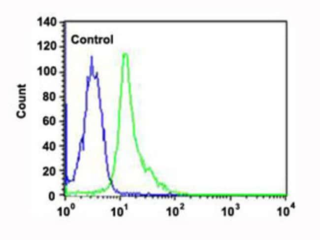 FYN Mouse anti-Human, Clone: 1302CT390.118.237, Abnova 400μL; Unlabeled:Antibodies
