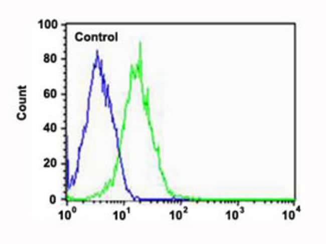 PPT1 Mouse anti-Human, Clone: 1117CT11.2.1.4, Abnova 400μL; Unlabeled:Antibodies