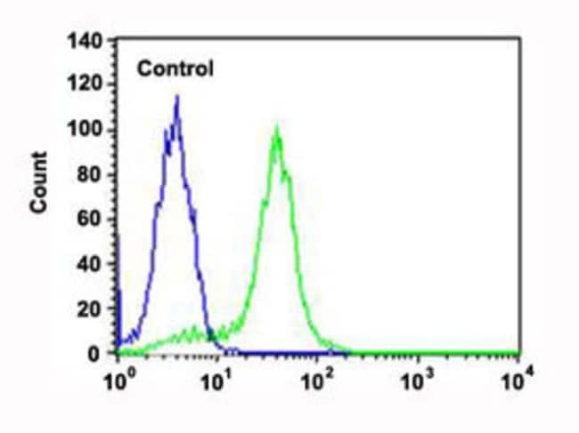 RPS6 Mouse anti-Human, Clone: 981CT2.1.1, Abnova 400μL; Unlabeled:Antibodies