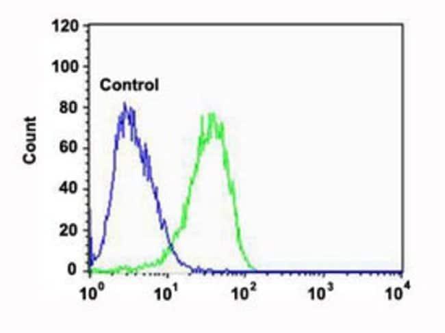 CAPN2 Mouse anti-Human, Clone: 1381CT669.7.66.71, Abnova 400μL; Unlabeled:Antibodies