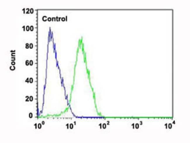 CHRM2 Mouse anti-Human, Mouse, Clone: 1424CT461.78.60, Abnova 400μL;