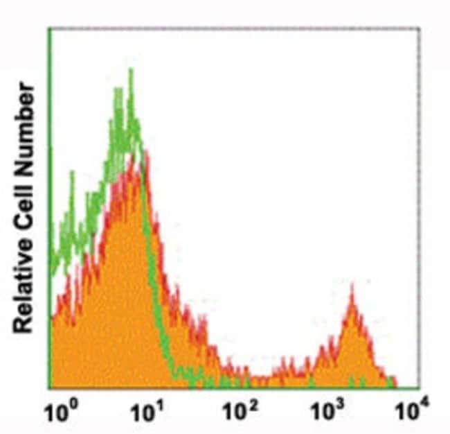 CD8A Rat anti-Mouse, PE, Clone: 4AM43, Abnova 50 Reactions; PE:Antibodies