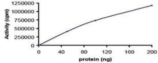 AbnovaHuman NEK2 (NM_002497) Full-length Recombinant Protein with GST-tag