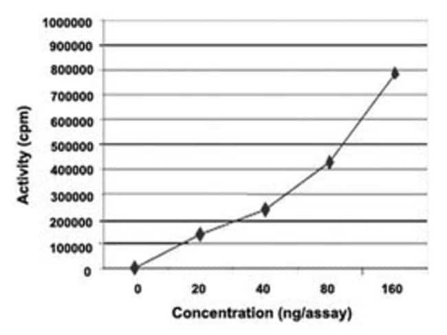 Abnova Human NEK6 (Q9HC98) Full-length Recombinant Protein with GST-tag