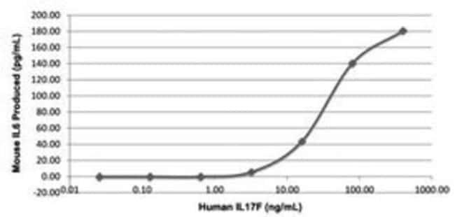 Abnova Human IL17F (Q96PD4) Recombinant Protein 25µg:Life Sciences