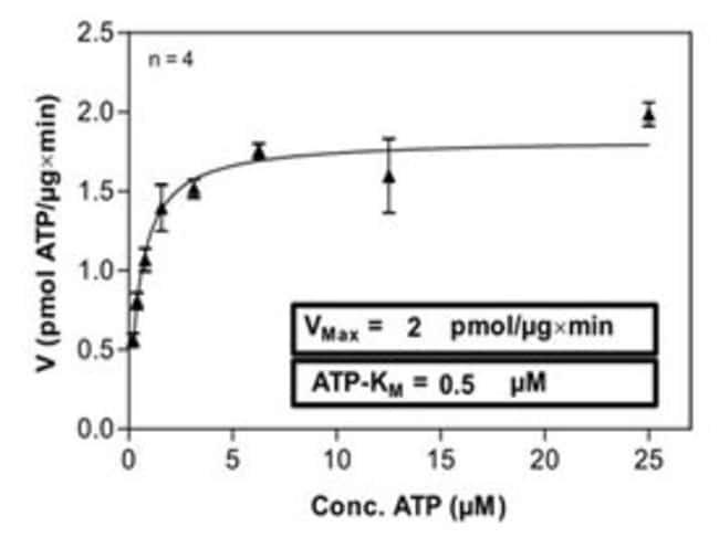 Abnova Human IKBKB (NM_001556, 1 a.a. - 756 a.a.) Full-length Recombinant