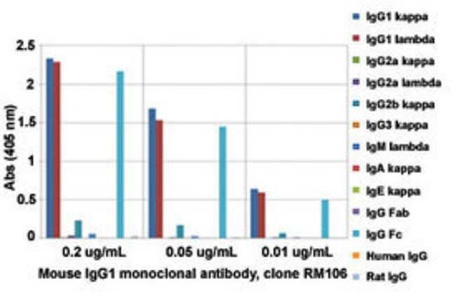 IGG1 Rabbit anti-Mouse, Clone: RM106, Abnova 100μg; Unlabeled:Antibodies