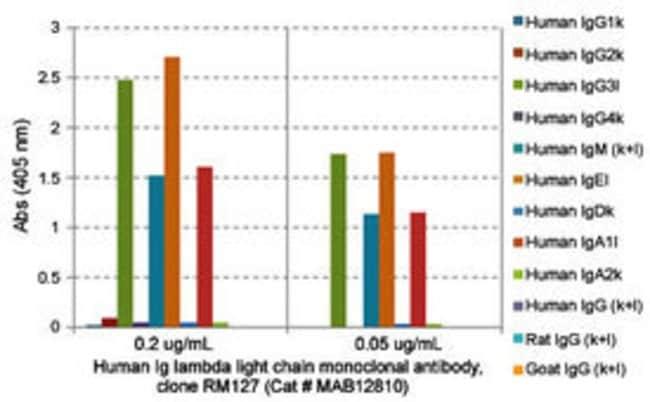 Ig lambda light chain Rabbit anti-Human, Clone: RM127, Abnova 100μg; Unlabeled