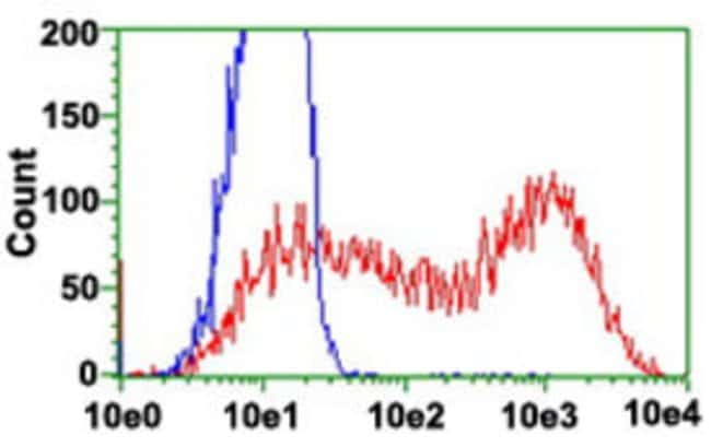 ARHGAP25 Mouse anti-Human, Clone: 12G4, Abnova 50μL; Unlabeled:Antibodies