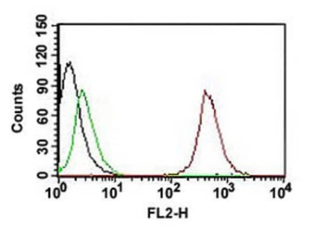 CD63 Mouse anti-Human, PE, Clone: SPM524, Abnova 500μL; PE:Antibodies