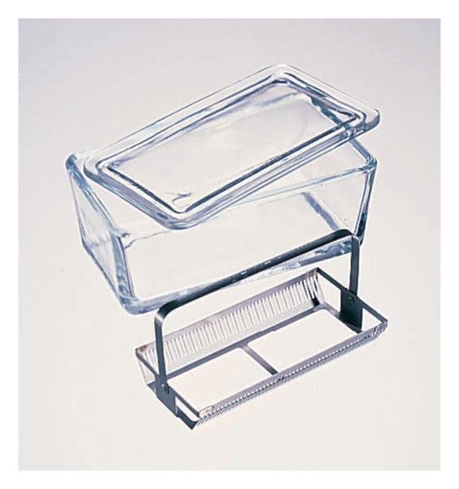 DWK Life Sciences Placas de tinción de vidrio para 50 pocillos ...