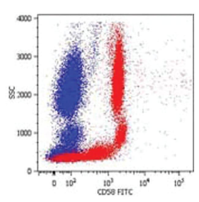 CD58 Mouse anti-Human, Porcine, Biotin, Clone: MEM-63, Invitrogen 100 µg;