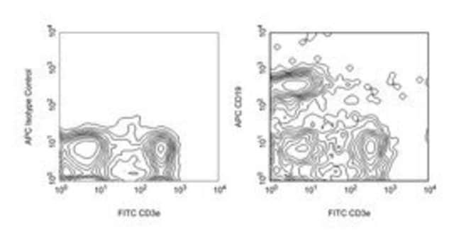 CD19 Rat anti-Mouse, APC, Clone: 1D3, BD 25μg; APC CD19 Rat anti-Mouse, APC, Clone: 1D3, BD