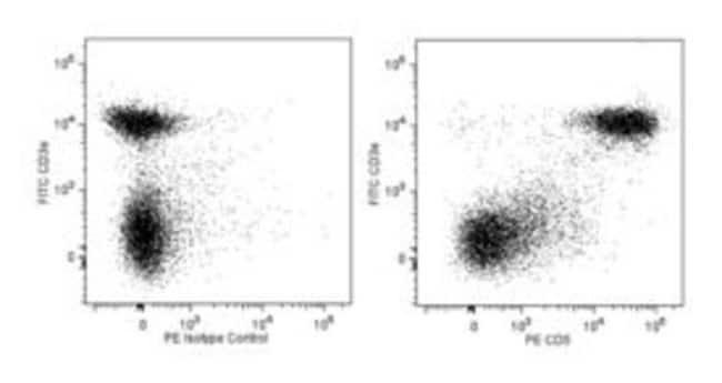 CD5 Rat anti-Mouse, PE, Clone: 53-7.3, BD 0.1mg; PE CD5 Rat anti-Mouse, PE, Clone: 53-7.3, BD