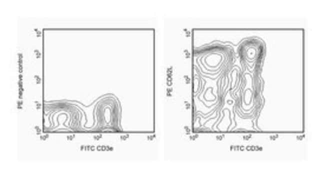 CD62L Rat anti-Mouse, PE, Clone: MEL-14, BD 25μg; PE CD62L Rat anti-Mouse, PE, Clone: MEL-14, BD