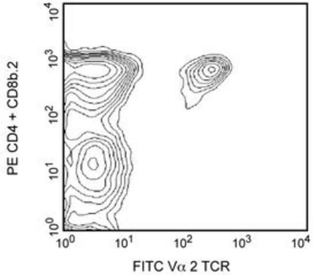 Vα2 TCR Rat anti-Mouse, FITC, Clone: B20.1, BD 0.25mg; FITC Vα2 TCR Rat anti-Mouse, FITC, Clone: B20.1, BD