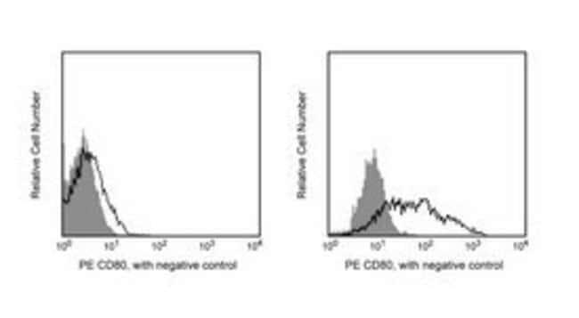 CD80 Hamster anti-Mouse, PE, Clone: 16-10A1, BD 25μg; PE CD80 Hamster anti-Mouse, PE, Clone: 16-10A1, BD