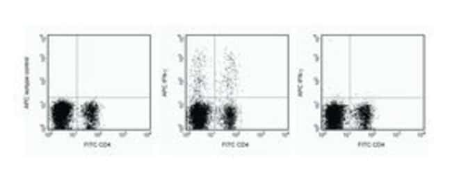 IFN-γ Rat anti-Mouse, APC, Clone: XMG1.2, BD 25μg; APC IFN-γ Rat anti-Mouse, APC, Clone: XMG1.2, BD