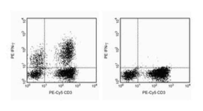 IFN-γ Mouse anti-Human, PE, Clone: 4S.B3, BD 0.1mg; PE IFN-γ Mouse anti-Human, PE, Clone: 4S.B3, BD