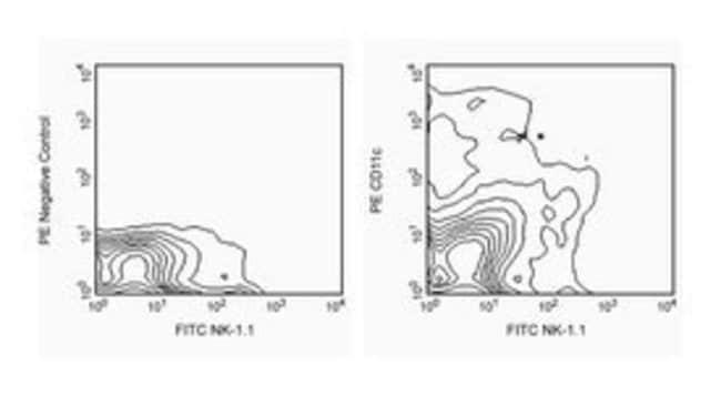CD11c Hamster anti-Mouse, PE, Clone: HL3, BD 25μg; PE CD11c Hamster anti-Mouse, PE, Clone: HL3, BD