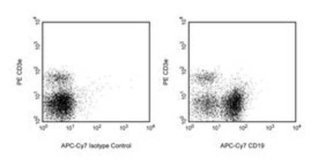 CD19 Rat anti-Mouse, APC-Cy7, Clone: 1D3, BD 25μg; APC-Cy7 CD19 Rat anti-Mouse, APC-Cy7, Clone: 1D3, BD