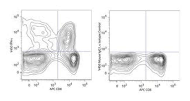 IFN-γ Maus-Anti-Human, V450, Klon: B27, BD 120Tests; V450 IFN-γ Maus-Anti-Human, V450, Klon: B27, BD