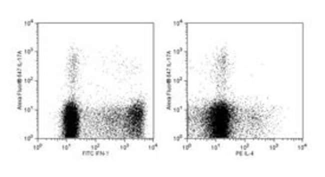 IL-17A Mouse anti-Human, Alexa Fluor 647, Clone: SCPL1362, BD 100 Tests; Alexa Fluor 647 IL-17A Mouse anti-Human, Alexa Fluor 647, Clone: SCPL1362, BD