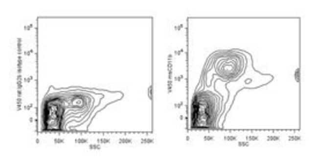 CD11b Rat anti-Mouse, V450, Clone: M1/70, BD 25μg; V450 CD11b Rat anti-Mouse, V450, Clone: M1/70, BD