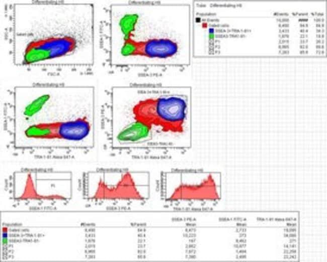BDStemflow Human Pluripotent Stem Cell Sorting and Analysis Kit 50 tests:Biochemical