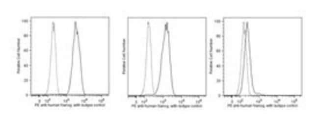 Nanog Mouse anti-Human, PE, Clone: N31-355, BD 100 Tests; PE Nanog Mouse anti-Human, PE, Clone: N31-355, BD