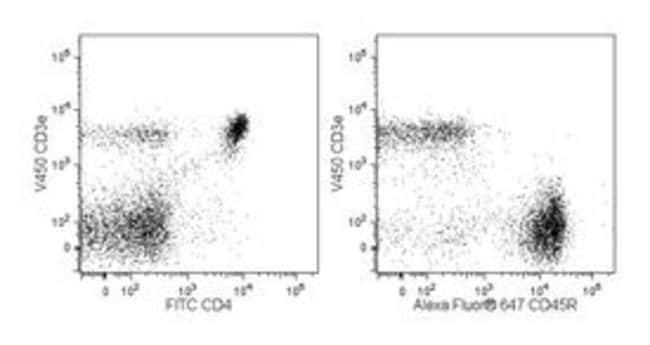 CD3e Hamster anti-Mouse, V450, Clone: 500A2, BD 0.1mg; V450 CD3e Hamster anti-Mouse, V450, Clone: 500A2, BD