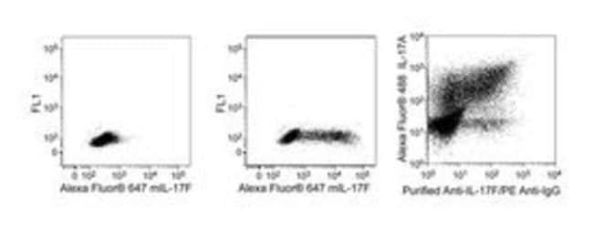 IL-17F Mouse anti-Mouse, Alexa Fluor 647, Clone: O79-289, BD 0.1mg; Alexa Fluor 647 IL-17F Mouse anti-Mouse, Alexa Fluor 647, Clone: O79-289, BD