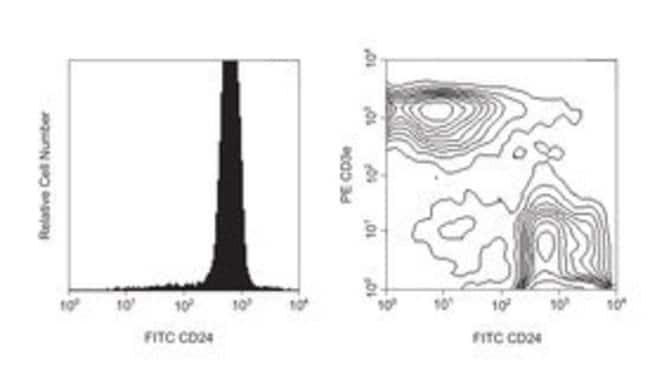 CD24 Rat anti-Mouse, FITC, Clone: M1/69, BD 0.1mg; FITC CD24 Rat anti-Mouse, FITC, Clone: M1/69, BD