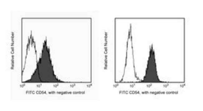 CD54 Hamster anti-Mouse, FITC, Clone: 3E2, BD 0.1mg; FITC CD54 Hamster anti-Mouse, FITC, Clone: 3E2, BD