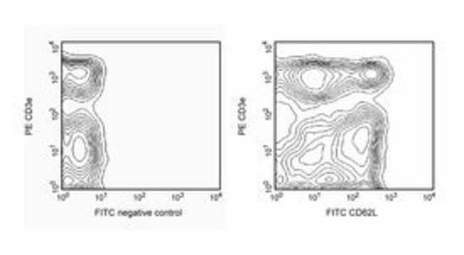 CD62L Rat anti-Mouse, FITC, Clone: MEL-14, BD 0.1mg; FITC CD62L Rat anti-Mouse, FITC, Clone: MEL-14, BD