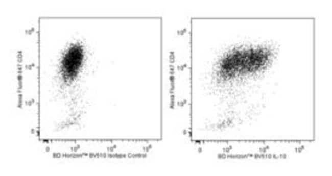 anti-IL-10; Clone: JES5-16E3; BD 50µg; BV510
