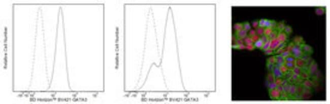 GATA3 Mouse, Brilliant Violet 421, Clone: L50-823, BD 50 Tests; Brilliant