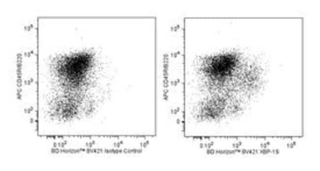 XBP-1S Mouse, Brilliant Violet 421, Clone: Q3-695, BD 50 Tests; Brilliant