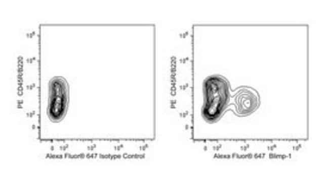 Blimp-1 Rat anti-Mouse, Alexa Fluor 647, Clone: 5E7., BD 50µg; Alexa