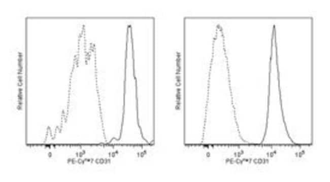 CD31 Mouse anti-Human, PE-Cy7, Clone: WM59, BD 50 Tests; PE-Cy7:Life Sciences