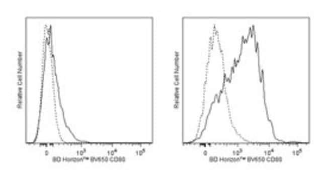 CD80 Hamster anti-Mouse, Brilliant Violet 650, Clone: 16-10A1, BD 50μg;