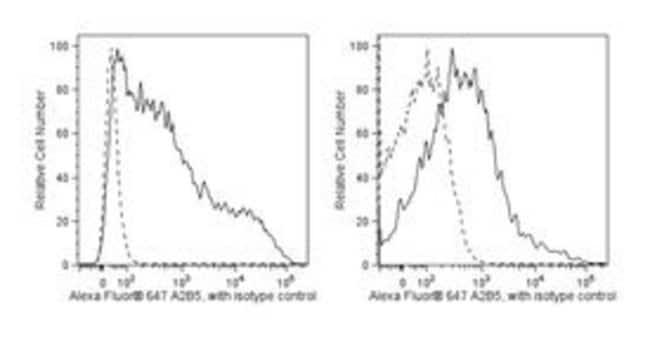 A2B5 Mouse, Alexa Fluor 647, Clone: 105/A2B5, BD 50 Tests; Alexa Fluor