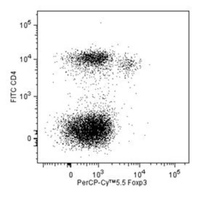 FOXP3 Rat anti-Mouse, PerCP-Cy5.5, Clone: R16-715, BD 50µg; PerCP-Cy5.5:Life