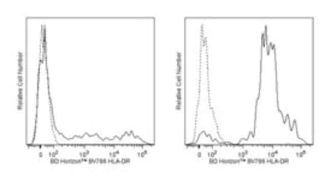 anti-HLA-DR, BV786; Clone: G46-6; BD 50 Tests; BV786:Life Sciences