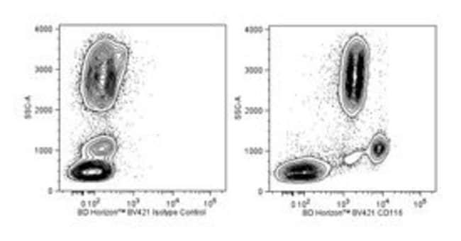 CD116 Mouse anti-Human, Brilliant Violet 421, Clone: hGMCSFR-M1, BD 50µg;