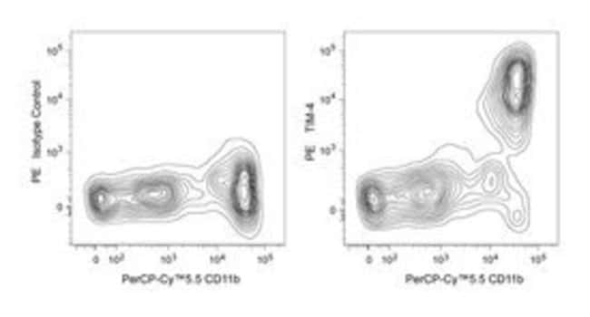 TIM-4 Rat anti-Mouse, PE, Clone: RMT4-54, BD 50µg; PE:Life Sciences
