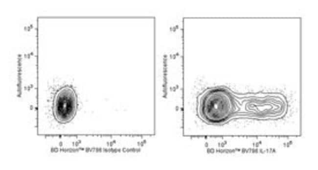 anti-IL-17A, BV786 ; Clone: TC11-18H10; BD 50µg; BV786:Life Sciences