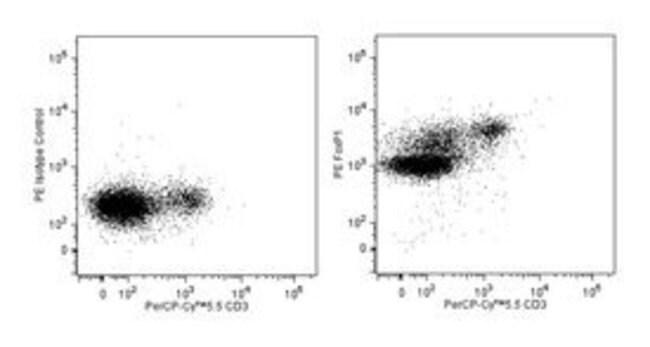 FoxP1 Mouse, PE, Clone: JC12, BD 50µg; PE:Life Sciences