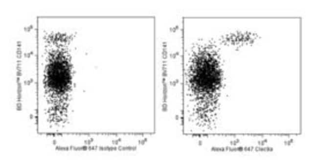 Clec9A Rat anti-Human, Alexa Fluor 647, Clone: 3A4/Clec9A, BD 25µg;