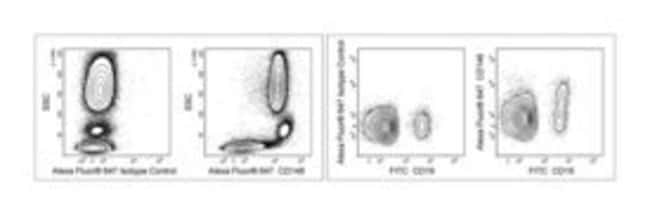 CD148 Mouse anti-Human, Alexa Fluor 647, Clone: A3, BD 100 Tests; Alexa